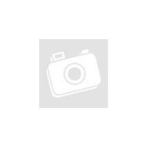 Acer Veriton M421G alaplap,2 magos CPU,hátlap