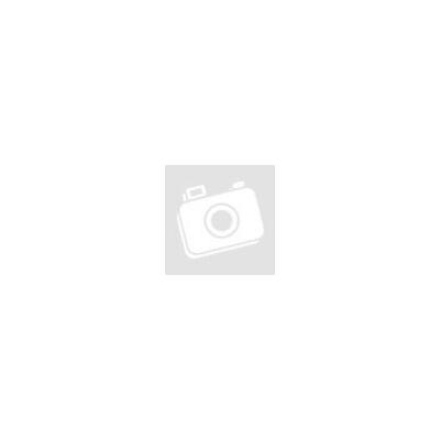 FSP350-60HHN(85) 350W 80+ PFC tápegység
